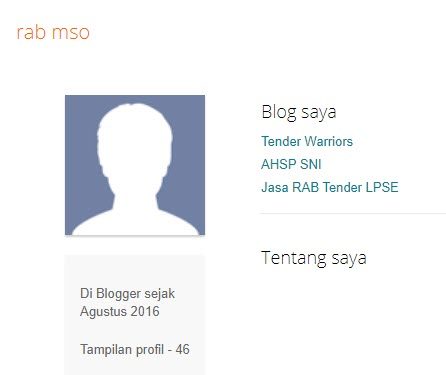 RAB MSO Profil